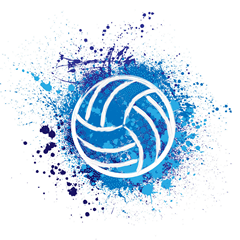 firstvolleyball